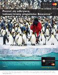 pingwiny_230x300_3.jpg