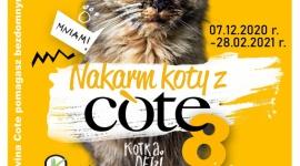 """Już wkrótce wystartuje 8 edycja """"Nakarm koty z COTE"""""""